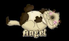 Angel - KittySitUps