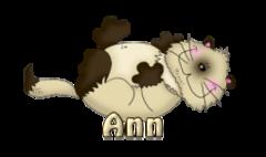 Ann - KittySitUps