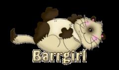 Barrgirl - KittySitUps