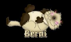 Berni - KittySitUps