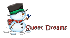 Sweet Dreams - Snowman&Bird