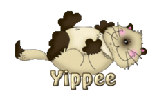 Yippee - KittySitUps