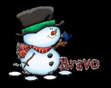 Bravo - Snowman&Bird
