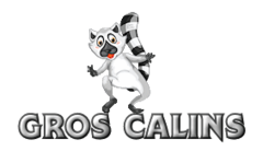 Gros Calins - RaccoonStepOnName