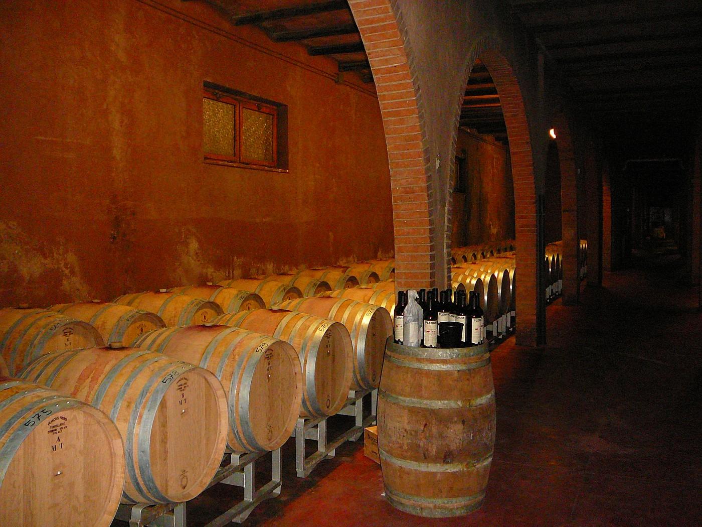 Dievole Winery New Cellar