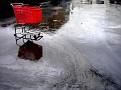 shopping cart after the rain