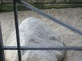 Plymouth rock after about 390 years of souvenier chipping