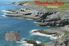 NEWFOUNDLAND & LABRADOR - Mistaken Point