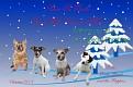 Christmas Card JPG