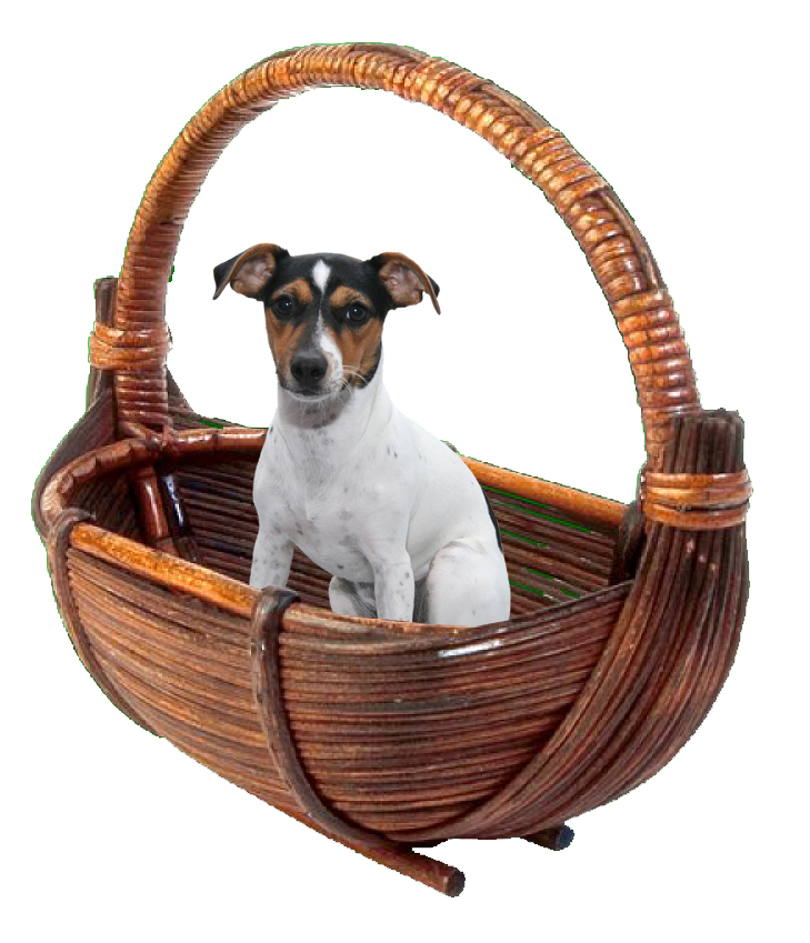 Kadie Wood Basket