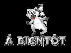 A bientot - RaccoonStepOnName