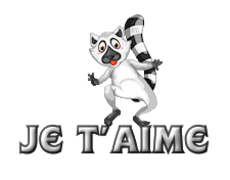 Je t'aime - RaccoonStepOnName
