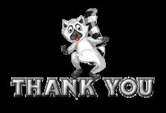 Thank You - RaccoonStepOnName