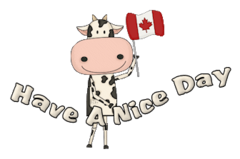 Have A Nice Day - CanadaDayCow