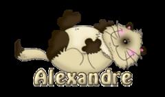 Alexandre - KittySitUps