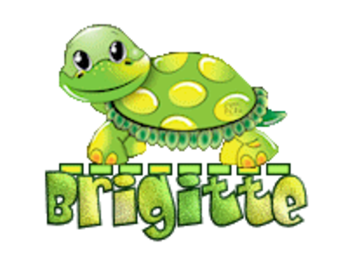 Brigitte - CuteTurtle