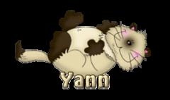 Yann - KittySitUps