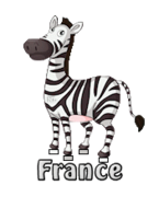 France - DancingZebra