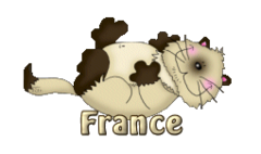 France - KittySitUps