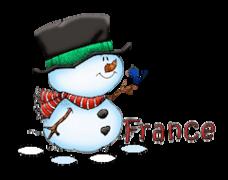 France - Snowman&Bird