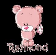 Raymond - ShyTeddy