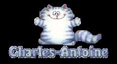 Charles-Antoine - CoolDanceMoves