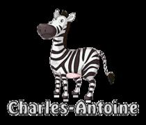 Charles-Antoine - DancingZebra