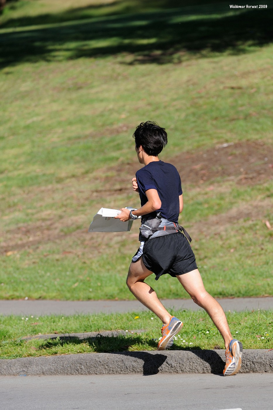 Pizza Delivery Runner