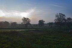Утро над рисовыми полями. Цейлон. The morning of rice fields. Ceylon.