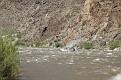 Colorado River (81)