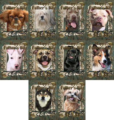 See Father's Day Gifts at www.zazzle.com/FrankzPawPrintz*