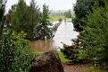 Bicentennial River Park 030312 1107am