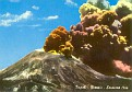 Vesuvio NP (NA)