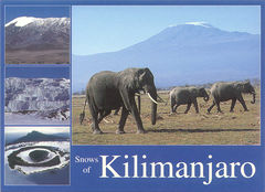 Kenya - ELEPHANT NA