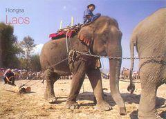 Laos - ELEPHANT NA
