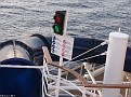 Toboga MSC SPLENDIDA 20100806 009