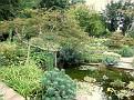 021. Foersters Garden