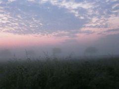 Morgendämmerung mit Nebel