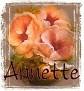 Annette-peachfloral