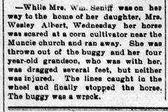 Anna K Senff buggy injury - Enquirer Fri Jun 15 1900
