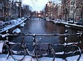 Lots of Canals in Amsterdam... Ducks, Swans swimming around like it's summertime... Pretty Cold here now...  Some canals ice covered.