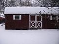 Snow Storm 1-30-2010 (11)