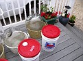 Spring Wine Making 2010 / Sanitizing and Rinsing the Damigiane, and hosing off the buckets and lids...