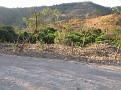 Images of El Salvador Day 2 (105)