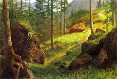 Wooded Hillside [undated]